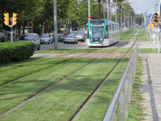 Tram che passa sull'erba appena rasata